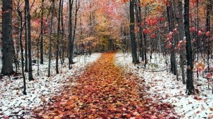 autunno inverno